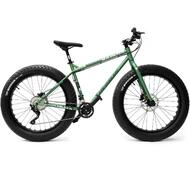 2015 WHEELER Snow Beach Sand Fat Mountain Bike