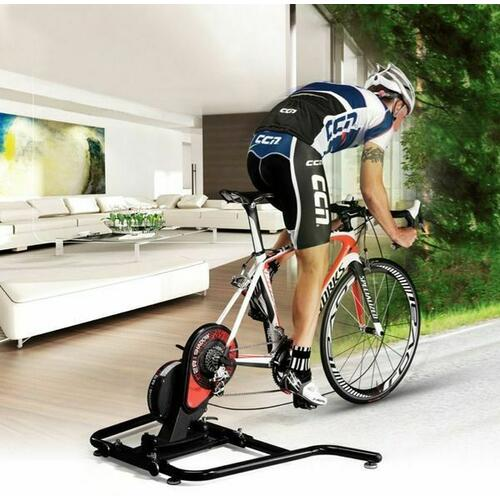 D2R Shadow Bike Bicycle Professional Roller Trainer