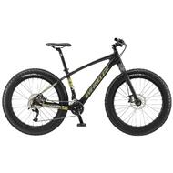 2016 WHEELER  PHOENIX  Carbon Snow Beach Sand Fat Mountain Bike 19""